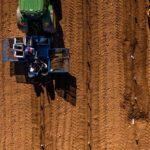 Adecuación terreno y plantación de Almendros Ciudad Real